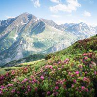 Mont Blanc hiking - 2